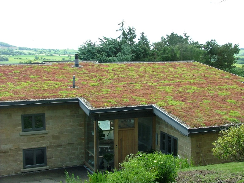 Green Roof Installations Endon Roofing